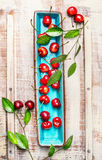 Sweet cherries with green leaves on blue rectangular plate on light wooden rustic background, top view. Royalty Free Stock Photography