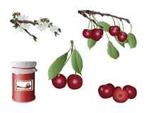 Sweet cherries Stock Images