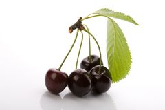 Sweet cherries isolated on white Stock Image
