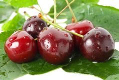 Sweet cherries with leaves Stock Photography