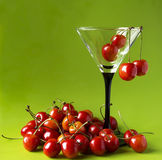 Sweet cherries in a martini-glass. Royalty Free Stock Image