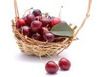 Sweet cherries in wicker basket Stock Photo