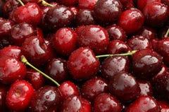 Sweet cherry. Background of freshly picked sweet cherries stock photo