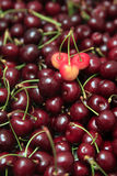 Sweet cherry. Red fresh cherry background,focus on the three cherry on top Stock Photography