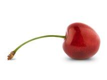 Free Sweet Cherry Stock Photos - 21367953