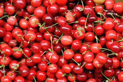 Sweet Cherry. Many sweet cherry in the basket stock photography