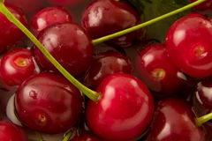 Sweet cherry. Sweet cherries and drops of water Stock Photography
