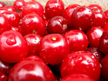 Sweet cherry. Image whit cherry from seasonal gathering royalty free stock photography