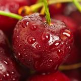 Sweet cherry background Royalty Free Stock Photos