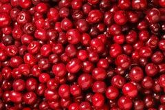 Sweet cherry background Stock Photo