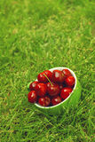Sweet cherry in a bowl Royalty Free Stock Images