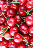 Sweet cherry close up Royalty Free Stock Photography