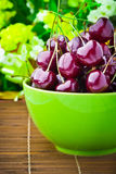 Sweet cherry fruits Stock Images
