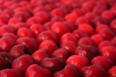 Sweet cherry fruits. The heap of sweet cherry fruits Royalty Free Stock Photo