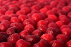 Sweet cherry fruits Royalty Free Stock Photo