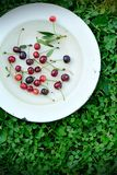 Sweet cherry fruits on the grass Stock Images