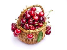 Sweet cherry fruits in wicker basket Royalty Free Stock Image