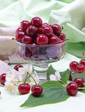 Sweet cherry in glass bowl Royalty Free Stock Image