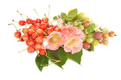 Sweet cherry, gooseberry and  lavatera Stock Photography
