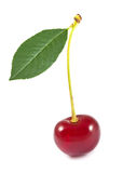 Sweet cherry with green leaf Royalty Free Stock Photography