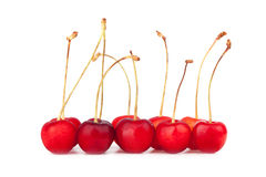 Sweet cherry Royalty Free Stock Images