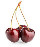 Sweet cherry isolated on white background Royalty Free Stock Photography