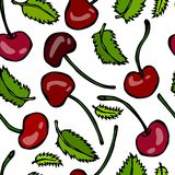 Sweet Cherry and Mint Leaves Seamless. Doodle Style Vector Design, Isolated on White Background. Stock Images