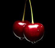 Sweet cherry pair Stock Images