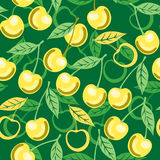 Sweet cherry seamless pattern Stock Photos