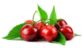 Sweet Cherry with stem and leaf Royalty Free Stock Photo