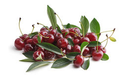 Sweet cherry. Royalty Free Stock Image