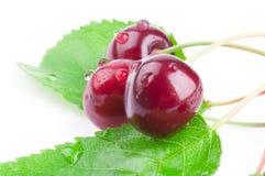 Sweet cherry Royalty Free Stock Photos