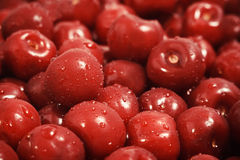 Sweet cherry with waterdrops Stock Image