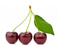 Sweet cherry on a white background Stock Photo