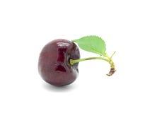 Sweet cherry on white background Stock Photos