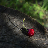 A sweet  cherry on a wooden surface in a sunbeam Stock Images