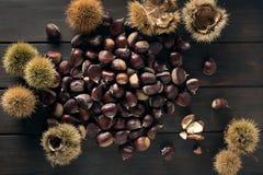 Sweet Chestnut still life. Castanea sativa. Edible chestnut. Top view stock image
