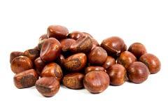 Sweet Chestnut on the white background Stock Photos
