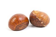 Sweet Chestnut on white background Stock Photo
