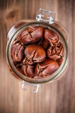 Sweet chestnuts Royalty Free Stock Image