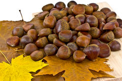 Sweet chestnuts Stock Images