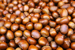 Sweet chestnuts. On white background Royalty Free Stock Photography