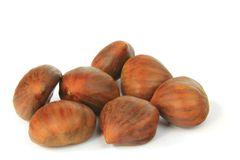 Sweet chestnuts (Castanea sativa) Royalty Free Stock Images