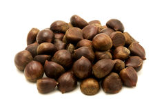 Sweet chestnuts fruits Stock Images