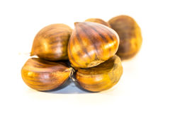 Sweet chestnuts isolated Stock Photography