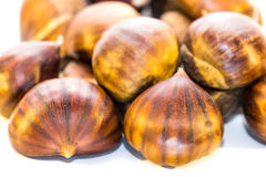 Sweet chestnuts isolated on white Stock Photography