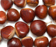 Sweet chestnuts isolated on white Royalty Free Stock Image