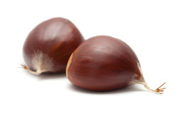 Sweet chestnuts isolated on white Royalty Free Stock Photography