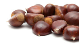 Sweet chestnuts isolated on white Stock Photos