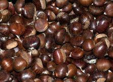 Sweet Chestnuts. On a market stall Stock Photography